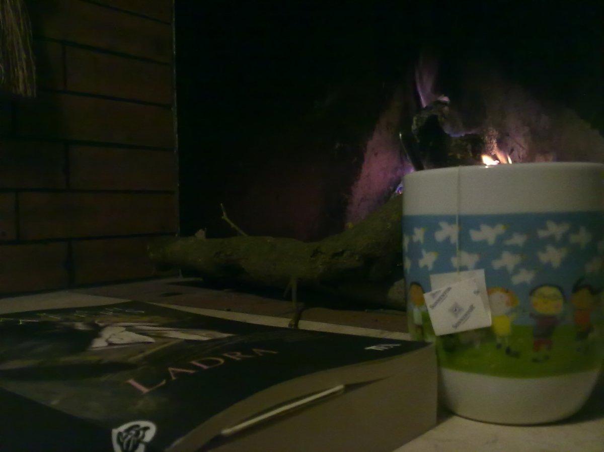 L'inverno, il freddo & le tisane