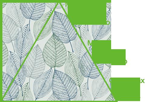piramide5